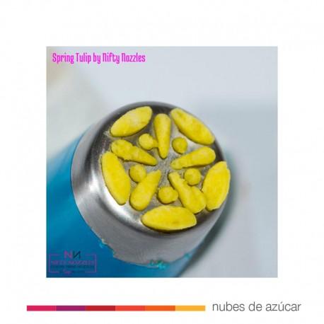Boquilla Rusa Tulipán de primavera (NN05)